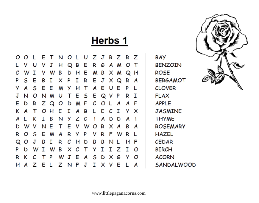 Herb Word Searches Little Pagan Acorns