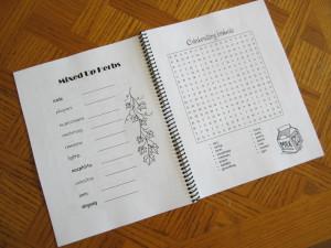 Pagan puzzle book