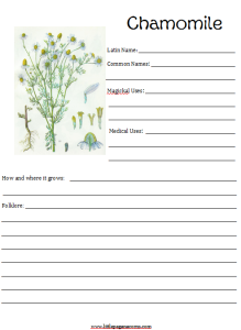 Herbal notebooking pages with a Pagan slant